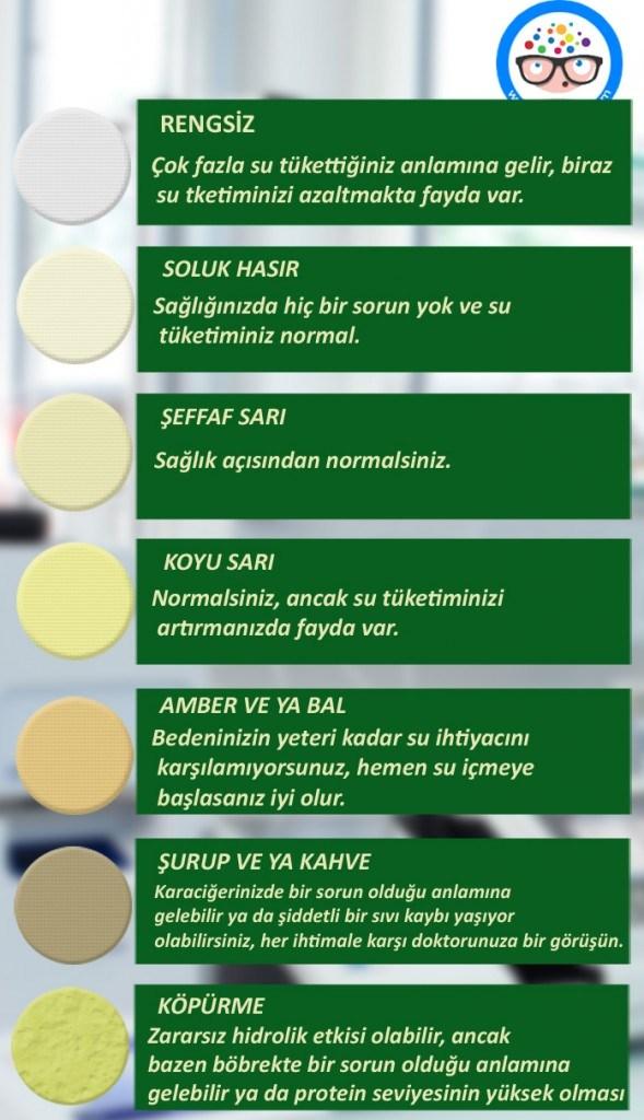 İdrar Rengi Anlamlari01