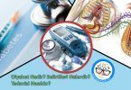 Diyabet Nedir-Belirtileri Nelerdir-Tedavisi Nasıldır
