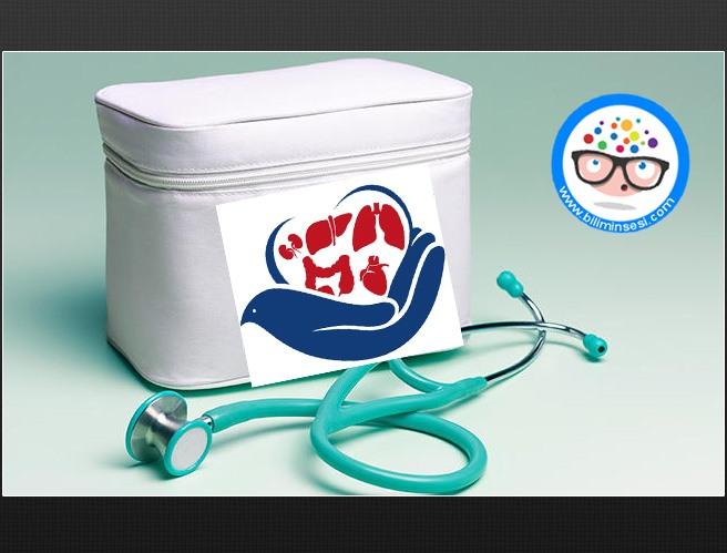 organ-nakli-her-yil-120-bin-hayat-kurtariyor-