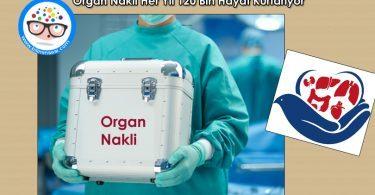 organ-nakli-her-yil-120-bin-hayat-kurtariyor