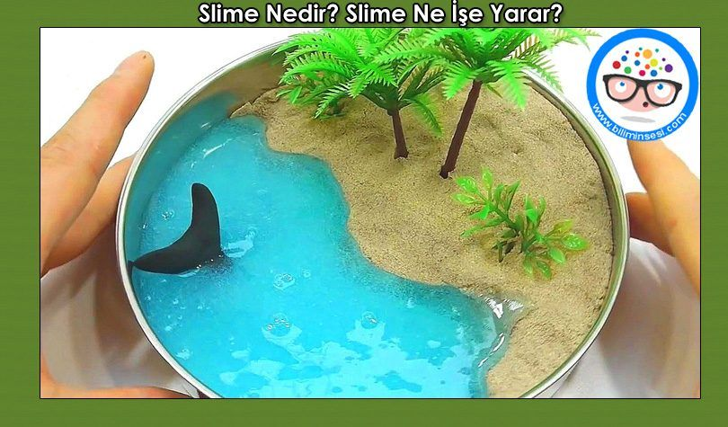 Slime Nedir-Slime Ne İse Yarar